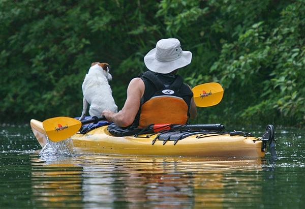 Kayaking at Toronto Islands