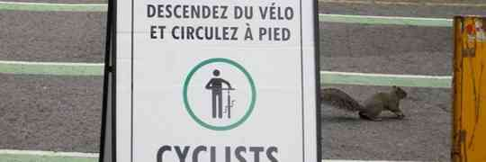 McGill's Bicycle Ban & Pedestrian Fear